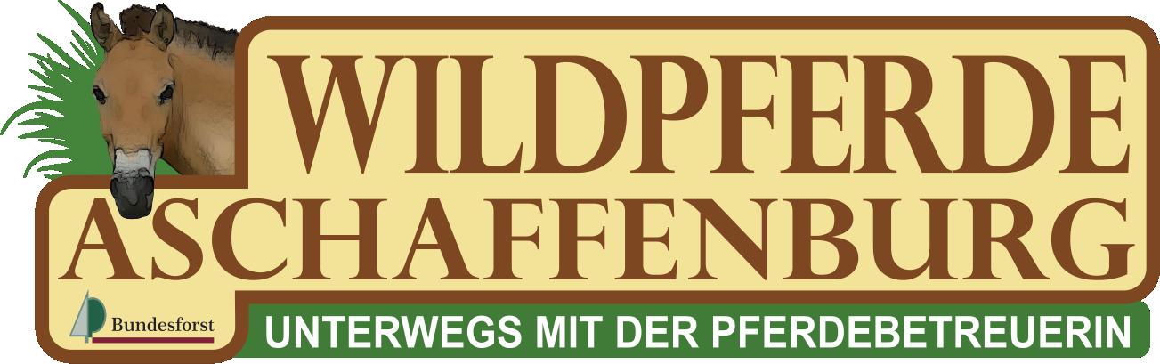 Wildpferde Aschaffenburg